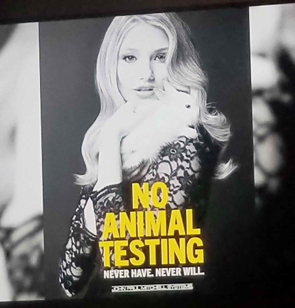 no_animal_testing.jpg