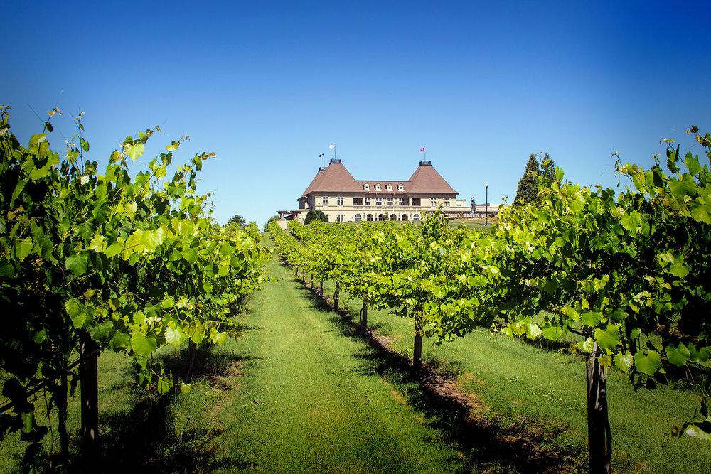 Chateau Elan Winery & Resort.