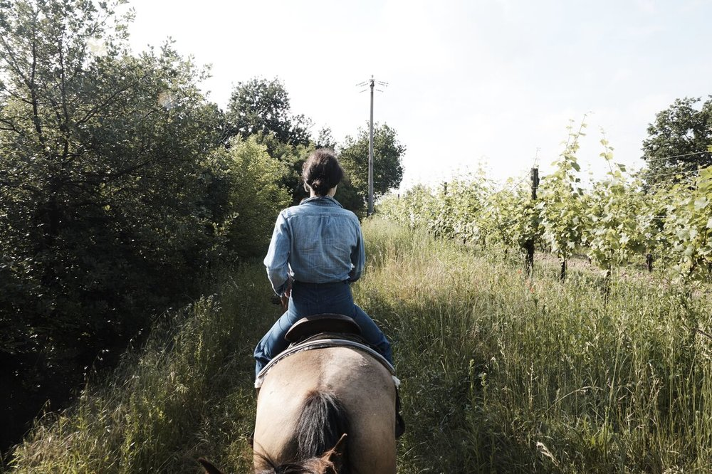 Franciacorta_Horseback_Riding_006_preview.jpg