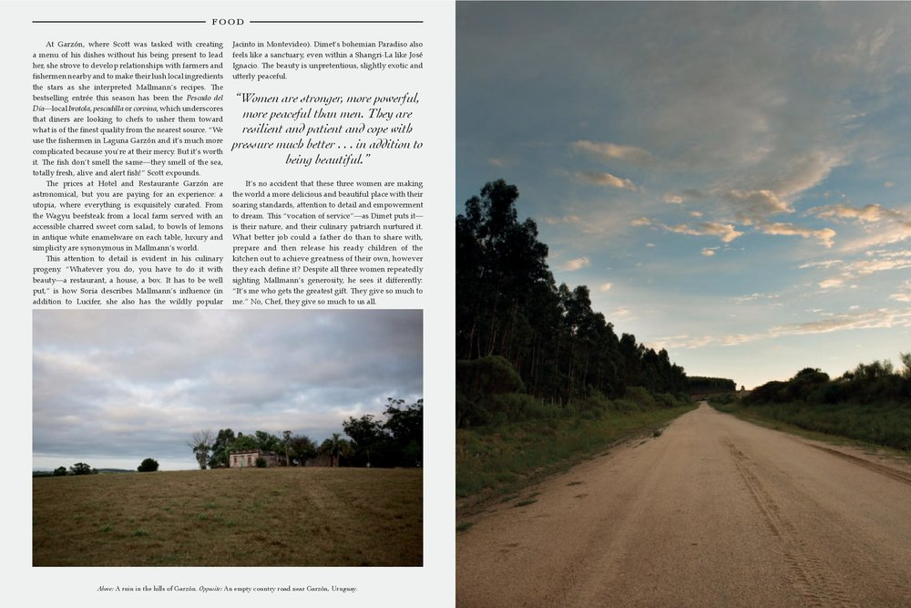 GREY I.III FF-page-005.jpg