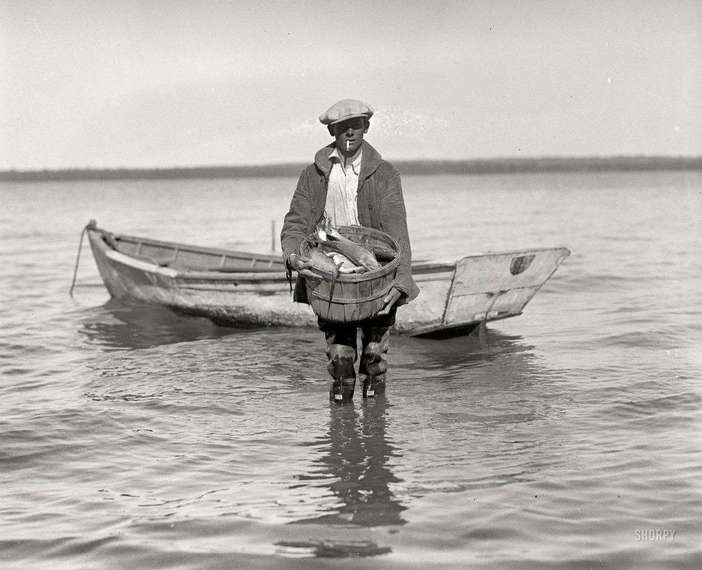 SHAD FISHING 1910.jpg