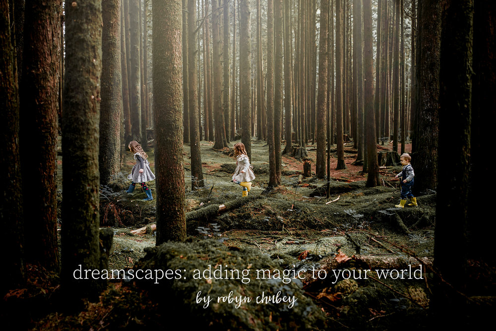 dreamscapes: adding magic to your world  - by robyn chubey