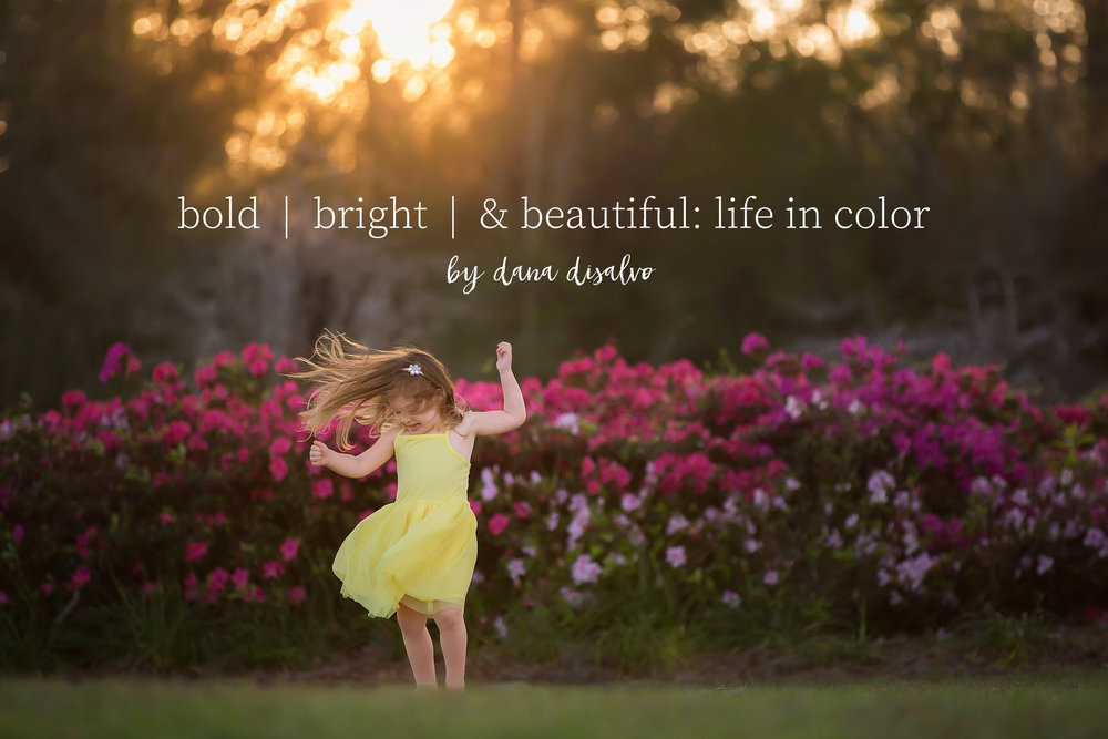 bold | bright | & beautiful: life in color  - by dana disalvo