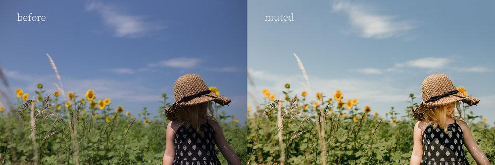 3. muted.jpg