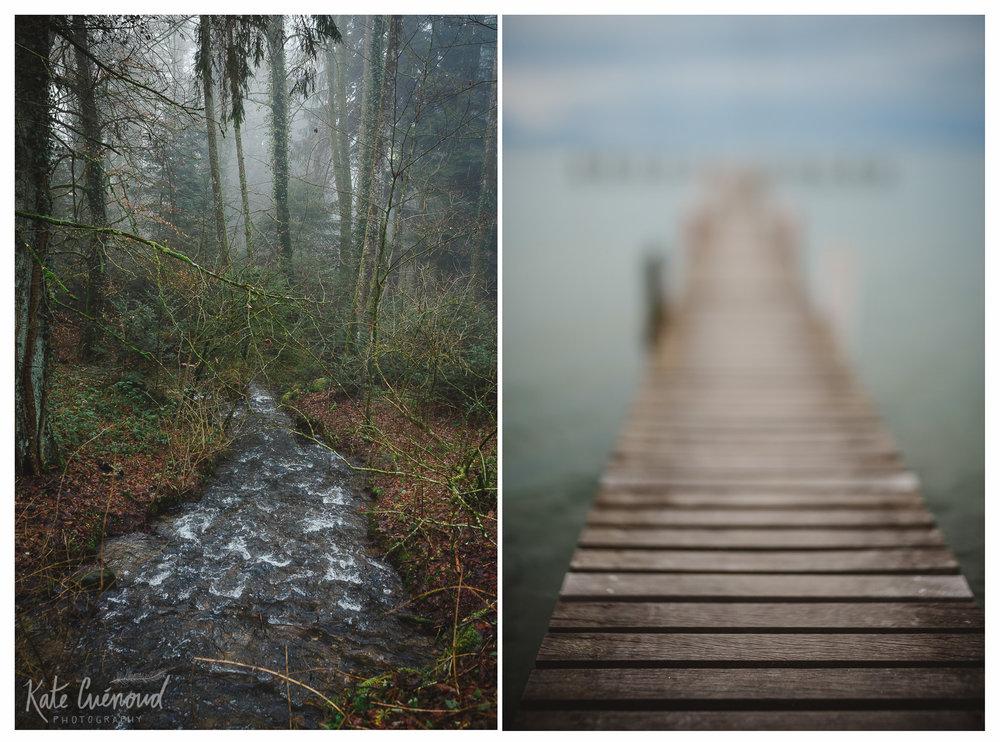 stream and dock.jpg