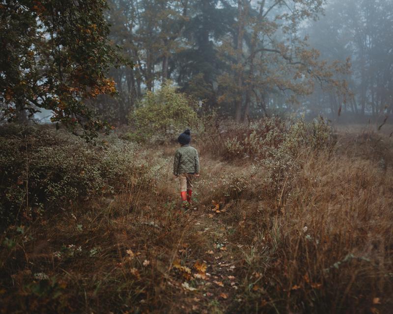 Image 2 for Finding the Light.jpg