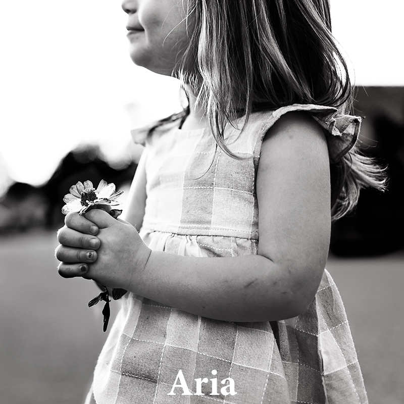 Aria: High contrast with rich blacks & bright highlights