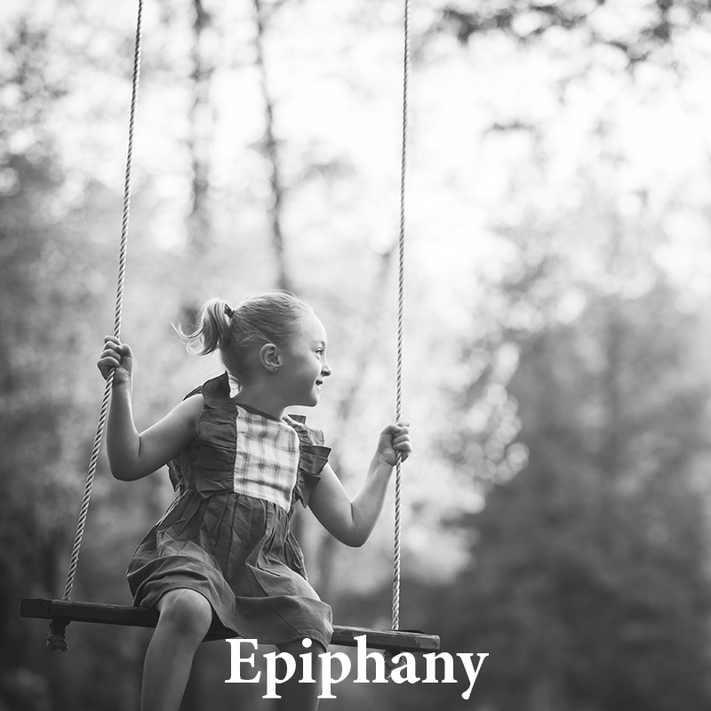 Epiphany: A silvery & luxurious black and white
