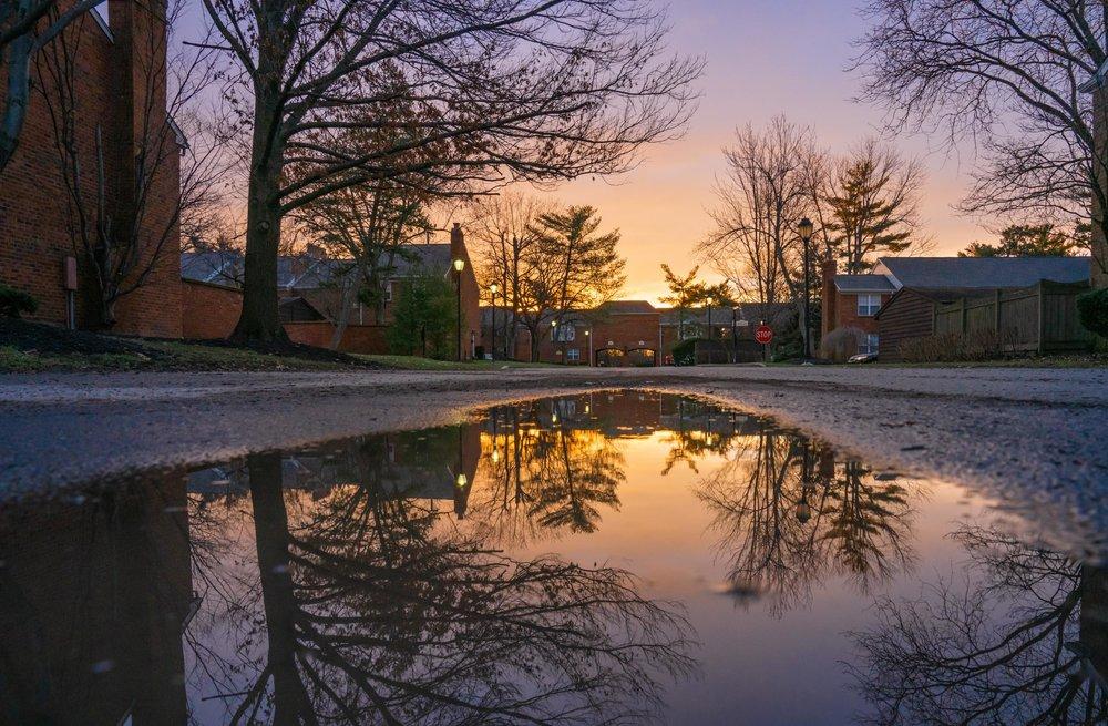 Sunrise puddle reflection