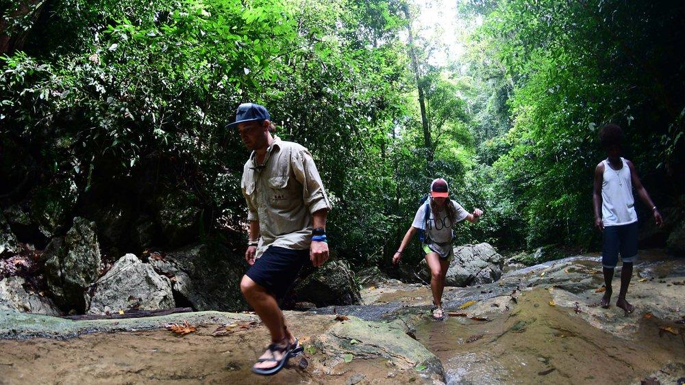 Exploring nature in Raja Ampat - What to do - Activities at the MahaRaja Eco Dive Lodge