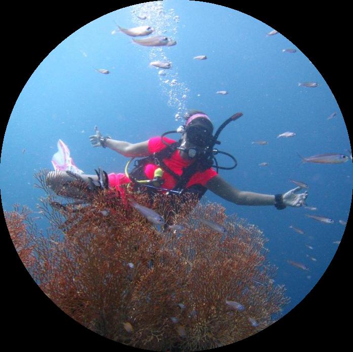 MahaRaja Eco Dive Lodge Ocean Calling - Dive Package (7D6N)