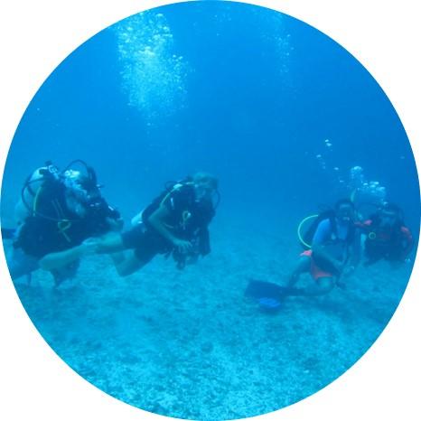 Raja Ampat Diving - What to do in Raja Ampat - Activities at the MahaRaja Eco Dive Lodge