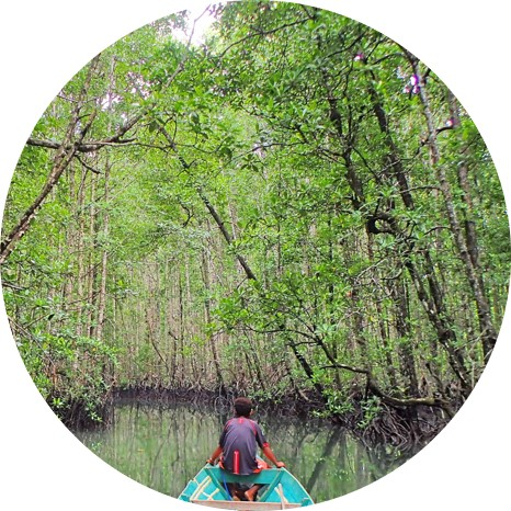 Raja Ampat Canoeing - What to do in Raja Ampat - Activities at the MahaRaja Eco Dive Lodge