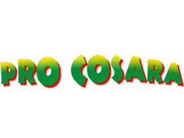 PROC logo.jpg