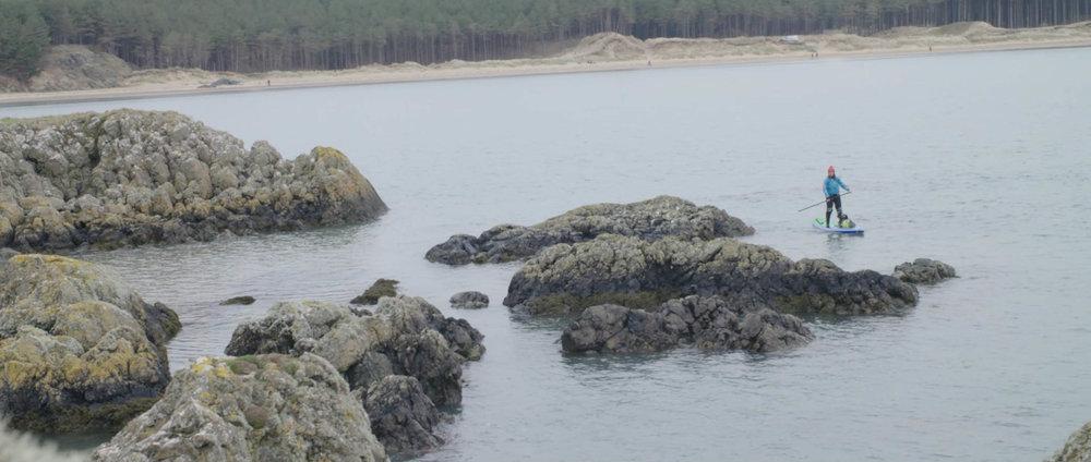 Plastic Tide 1.jpg
