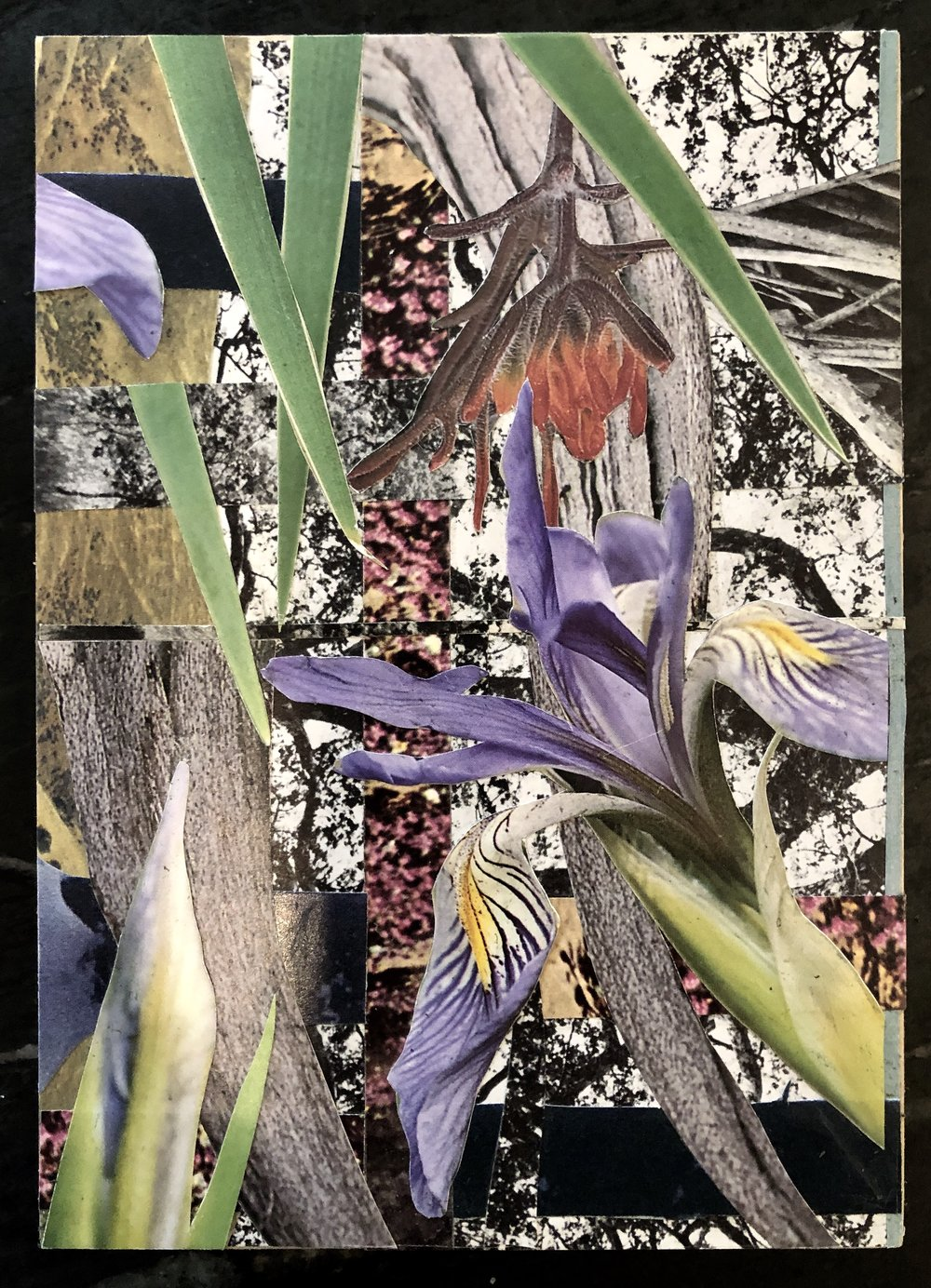 "Collage (Tiny Garden) 5"" x 7"" (on wood) 2019"