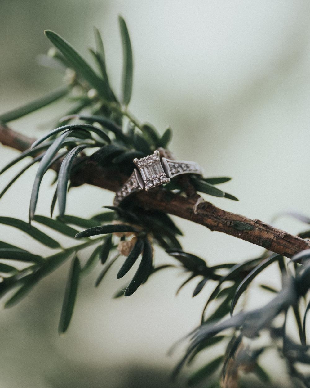 Engagement 2017 - 2018 (1 of 1)-21.jpg