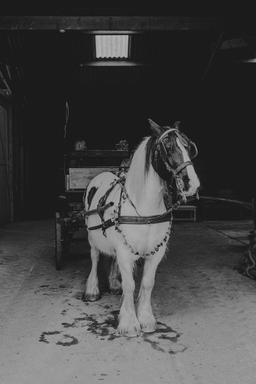 Captains-Wood-Barn-Alterative-Rustic-Vintage-Essex-Wedding-Suffolk-Grace-Elizabeth-4.jpg