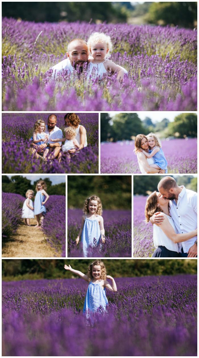 Lavender family photos