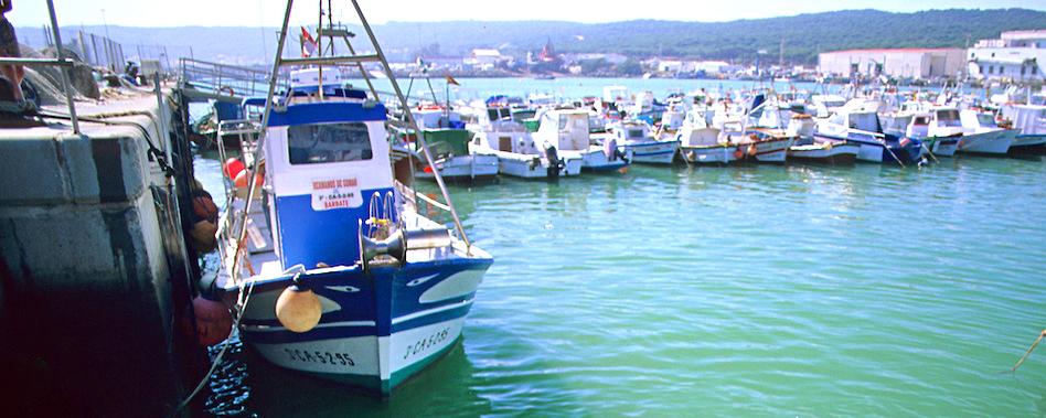 Barbate_panoramic.jpg