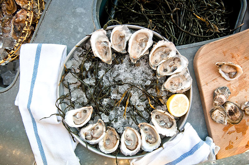 Grand-Banks-Oysters.jpg