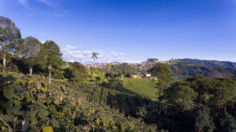 Colombia, Risaralda (Caldas)