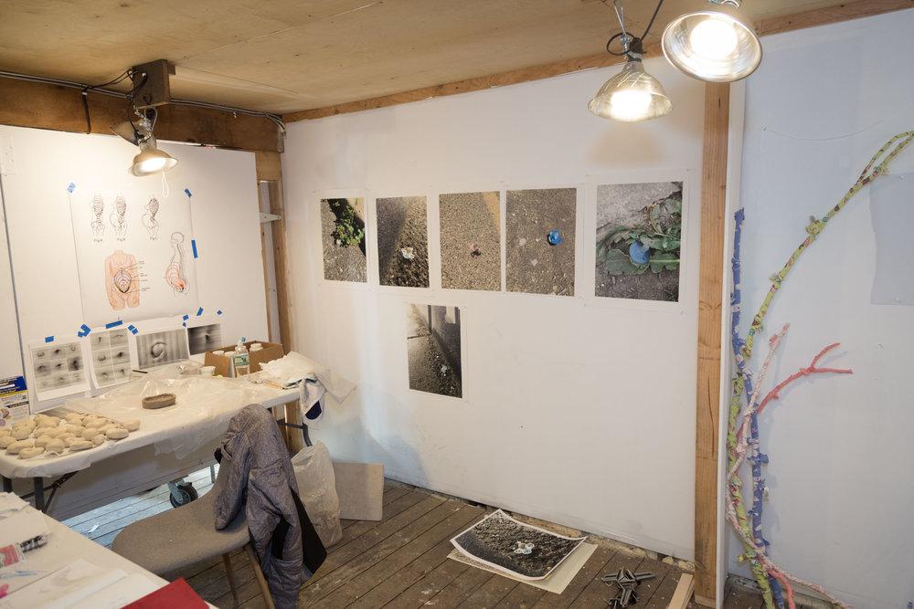 AIMEE GILMORE - Artist-in-Residence