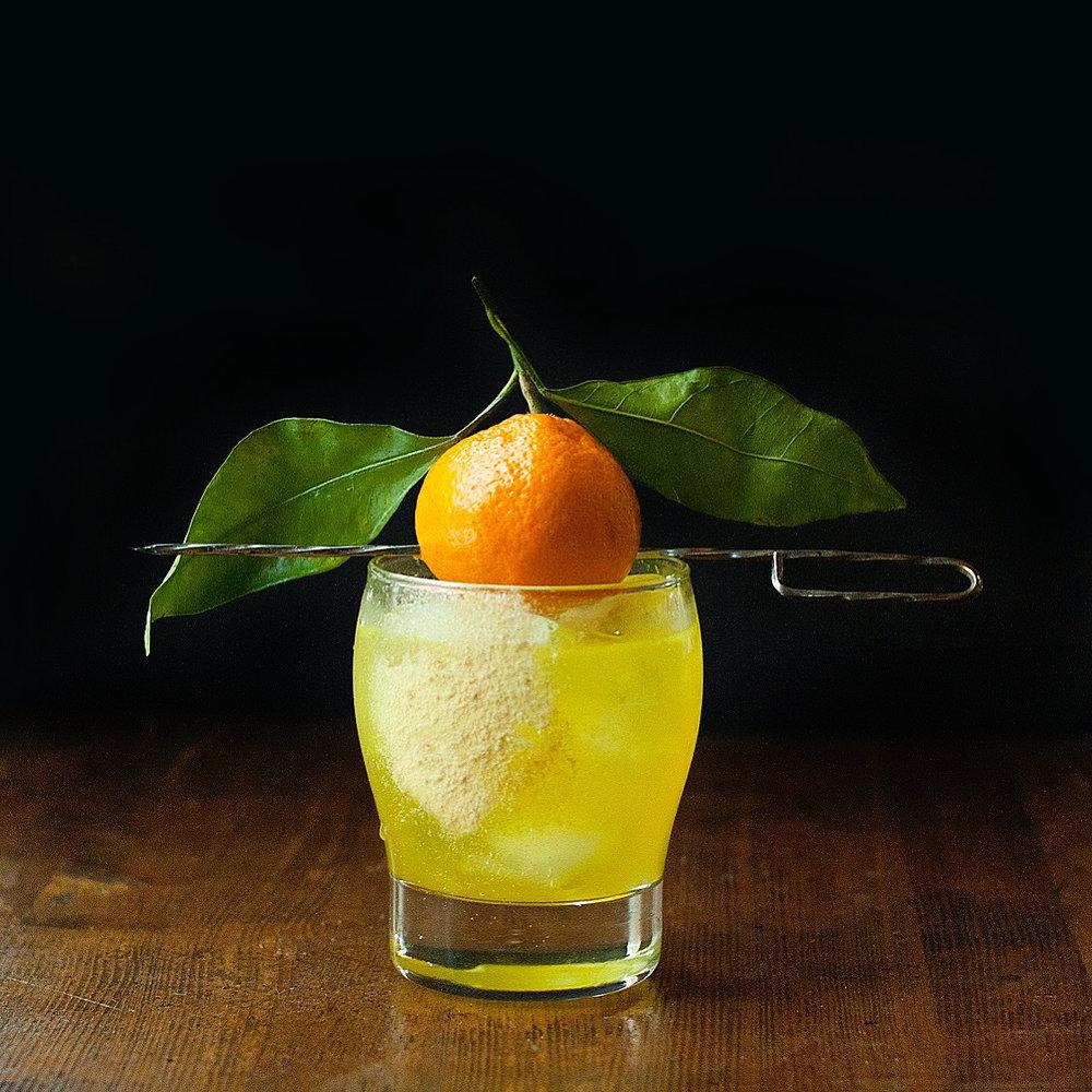Turmeric Ginger Gin