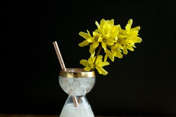 Forsythia Honey and Yogurt Bees Knees Cocktail