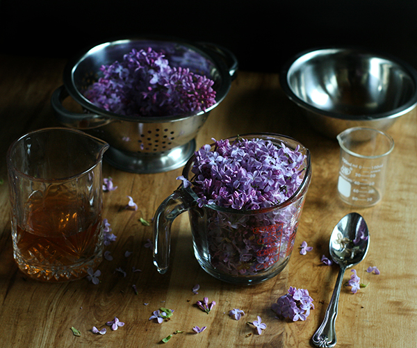 Foraged Cocktails: Making Lilac Liqueur