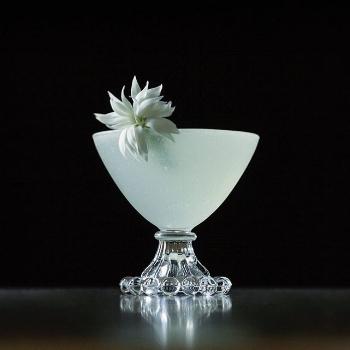 Dianthus (Bridal white star)