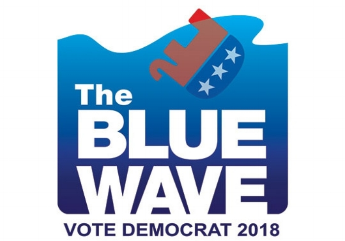 Join the Biggest Blue Wave in History!
