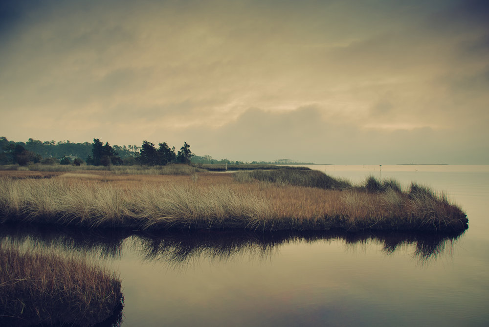 beaufortlandscape_rustywilliams.jpg