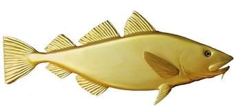 Golden Cod.jpg