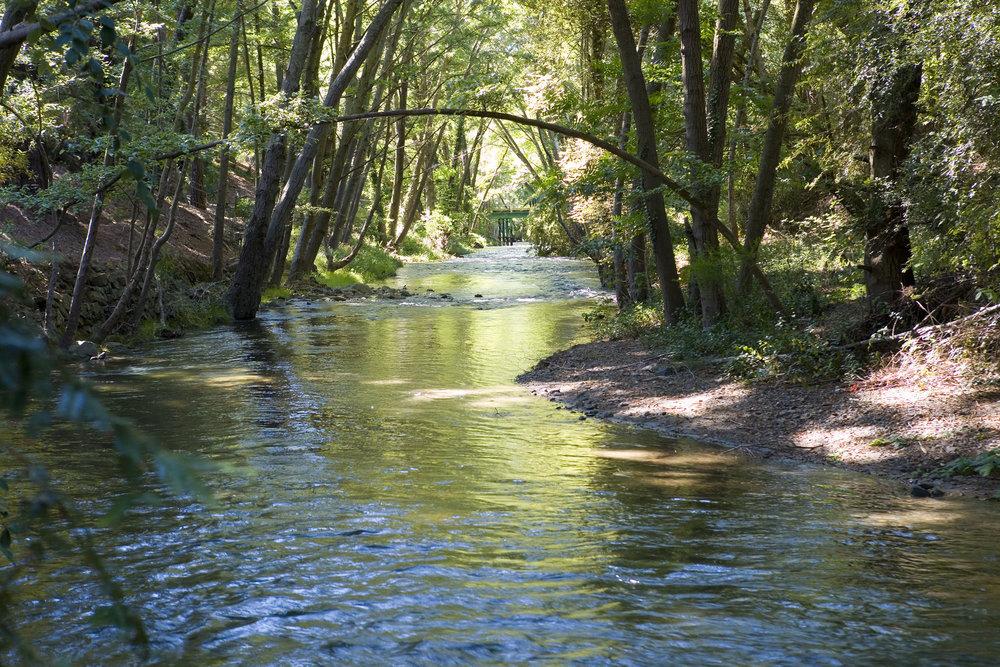EBMUD_2016_orinda-creek---stormwater.jpg