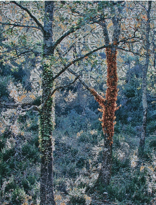 Tapestries.Magcloud.2.1325.jpg