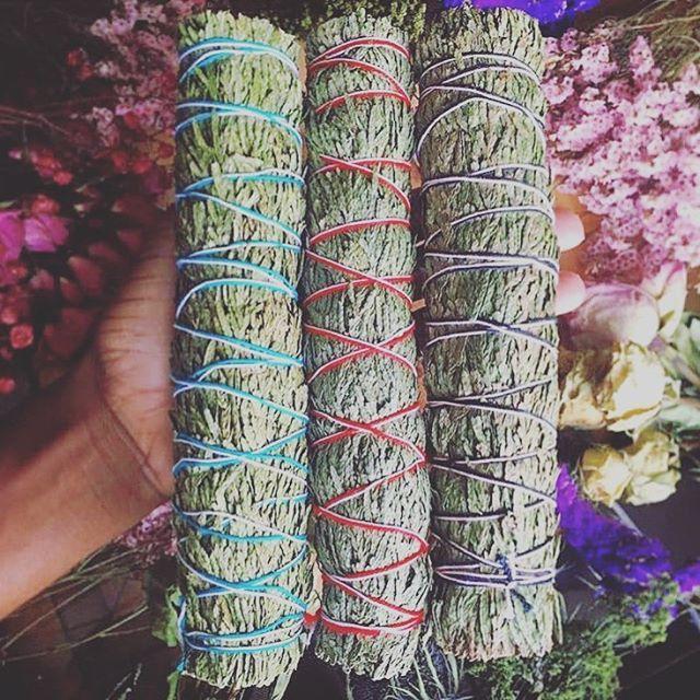 Sage Goals 🥰🥰🥰 We have a great selection of sage, palo santo, potted plants, and CBD.  We're located just north of downtown Fort Worth  1709 White Settlement Rd.  Fort Worth, TX  Open Monday - Saturday 12pm - 6pm  #cbd #cbdoil #cannabidiol #hemp #hempoil #fortworthcbd #holistichemp #holistichealing #holisticmedicine #naturalmedicine #plantmedicine #cbdlove #cbdhealth #cbdproducts #cbdbenefits #cbdlife #fortworth #shopfortworth #shoplocal #shopsmall #dfw #dfwcbd #sage #palosanto