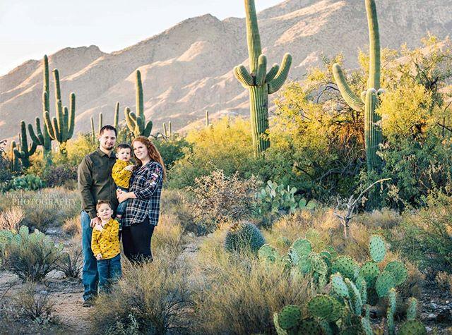 Desert pictures for a Swiss family 🌵💙 #desert #family #tucsonphotographer #profoto