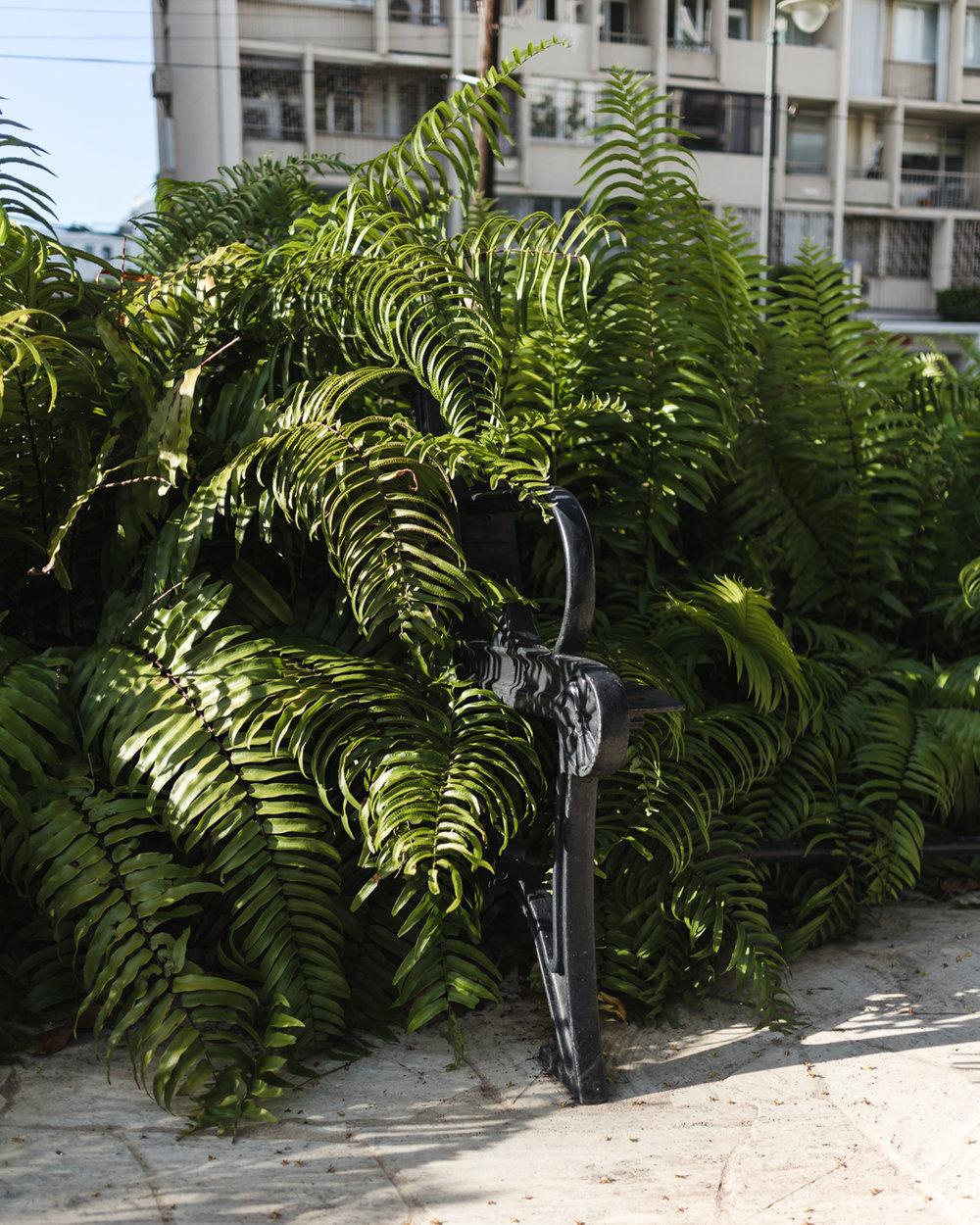 Santurce blog-17.jpg