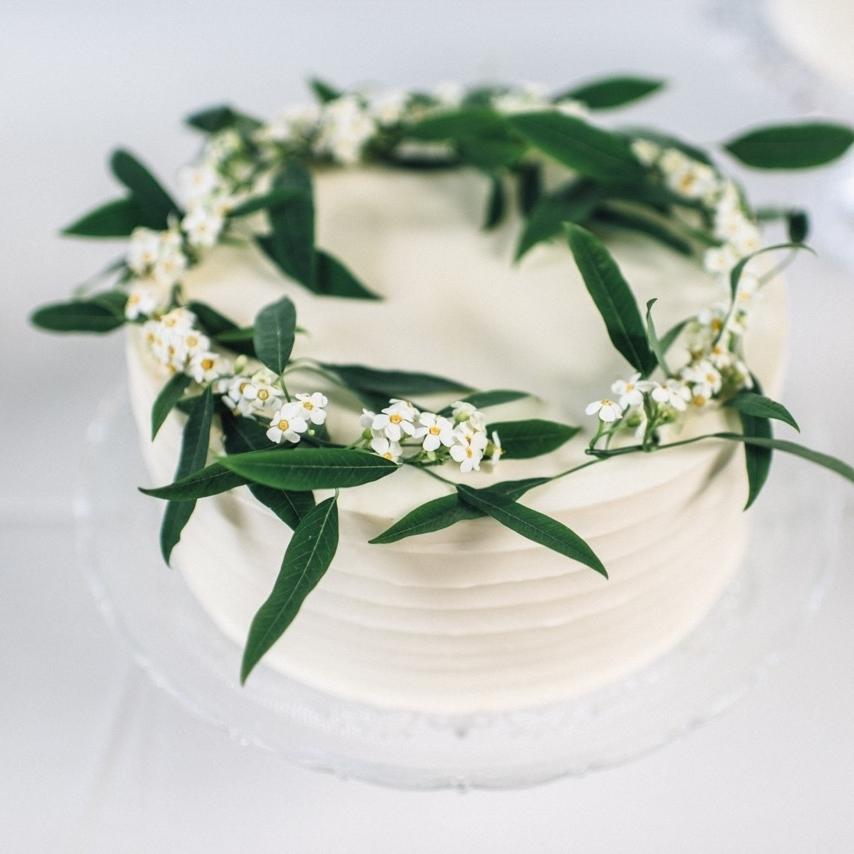 lynn palmer cakes - Lynn Palmerlynnpalmercakes@gmail.com
