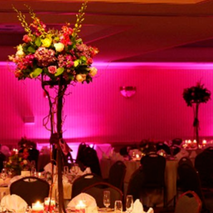 ct party pros - (203) 799-7889Jason Ebertjason@ctpartypros.com