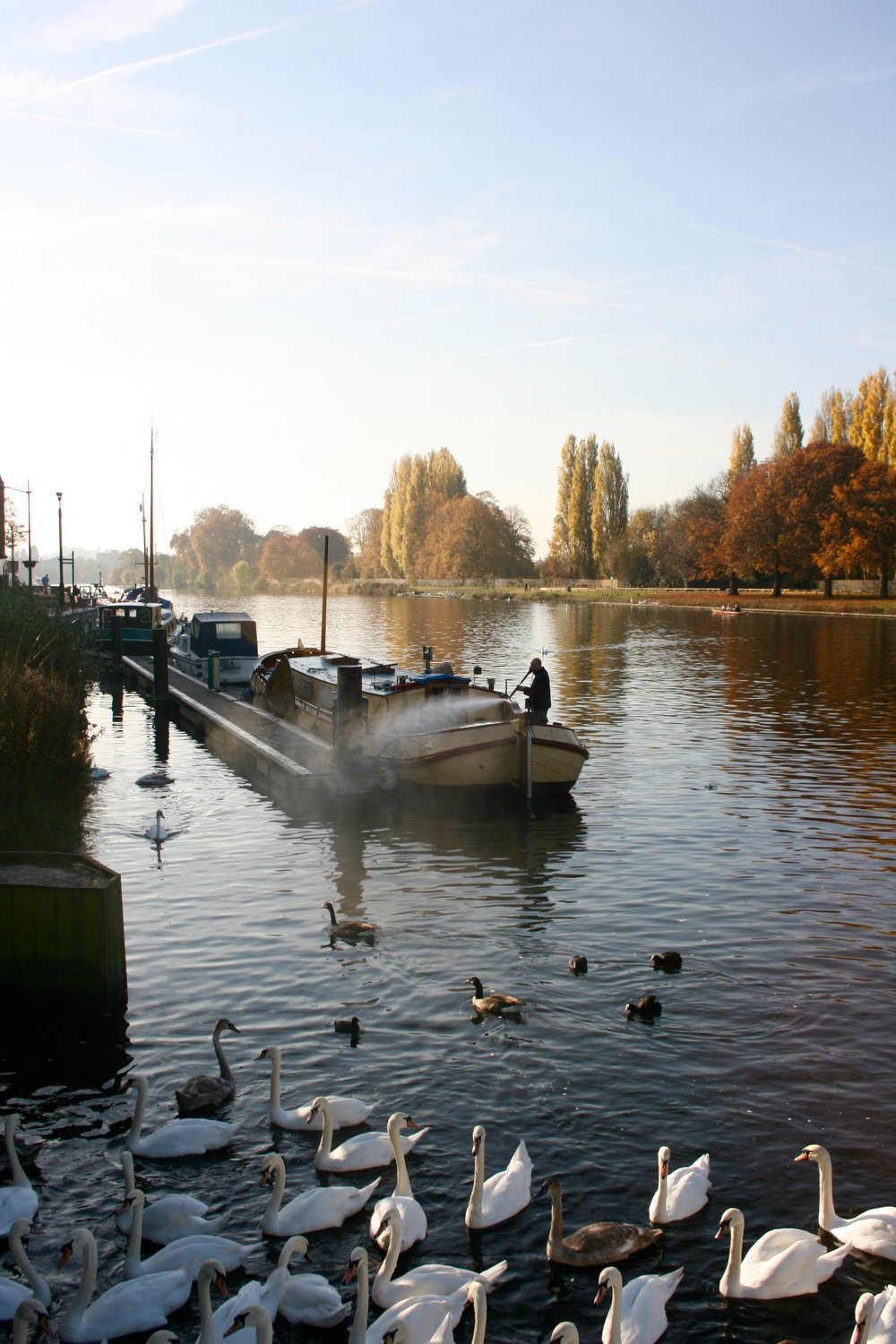 The shift of seasons, from Summer to Autumn in beautiful Kingston upon Thames