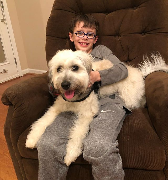 Well we did a thing. After 7 (almost 8) years of this boy not having a dog, Philip got his first dog today. Say hello to Carly, a Whoodle. 🐶 He's the happiest boy. 😍 #mansbestfriend #aboyandhisdog