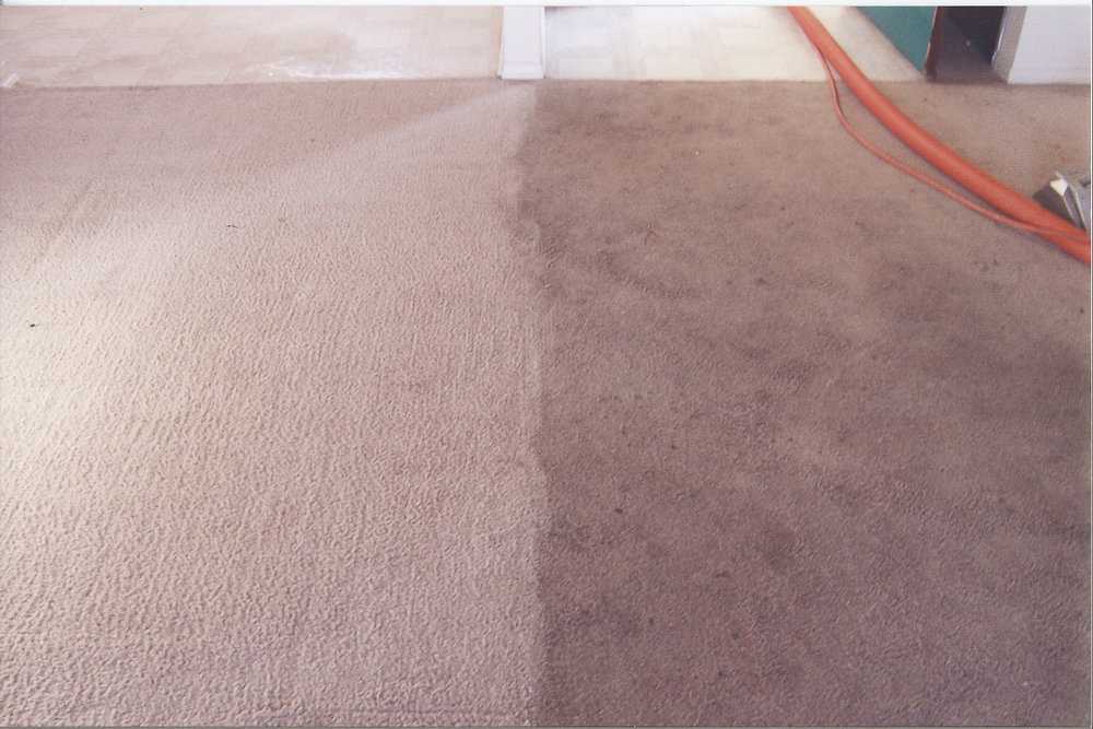 carpet cleaning before and after 2.jpg