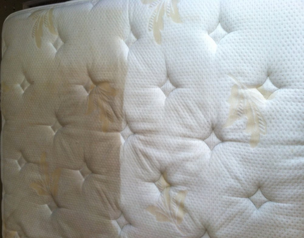 Mattress Cleaning Montreal Quality 1 Cleaning
