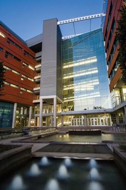 Institute of Molecular Medicine