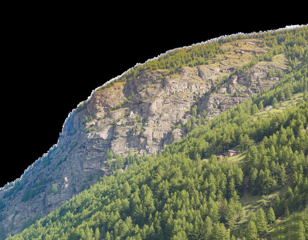 TexturesCom_MountainsGreen0076_2_alphamasked_S.png