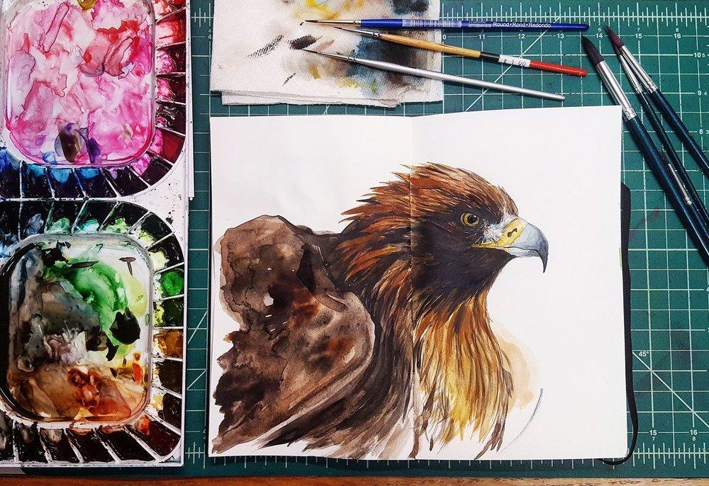 sketchbook (golden eagle study).jpg