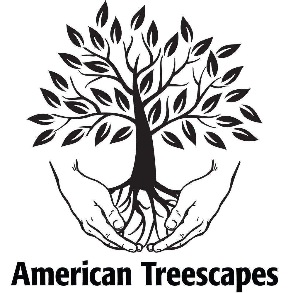 ATS-Logo-transparent-bckgrd.jpg