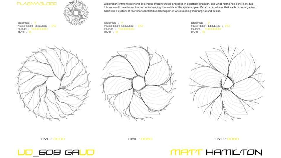 GC_Hair-11.jpg